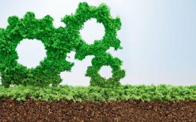 Fem fokusområden för hållbar prestation